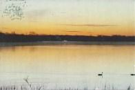 From Lori W--Sunset Sky