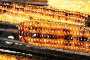 Image of grilled corn nairobi recipe