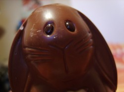 Will Your Chocolate Easter Bunnies Contain Child Labor?