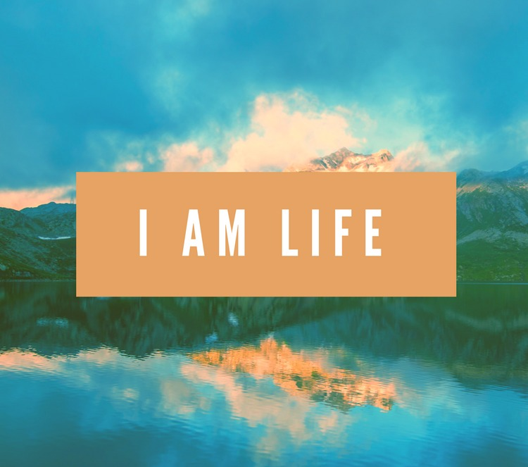 "Jesus answered, ""I am the way and the truth and the life."" John 14:6 Jesus Christ is life. He is our whole life, and apart from Him we have nothing. #Jesus #Life"
