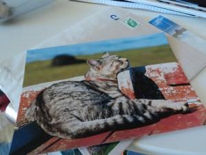Carte postale Bretagne