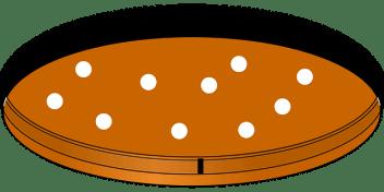 petri-dish-312452_640