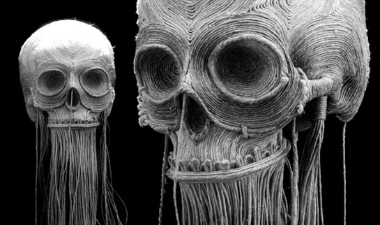 skullgallery.jpg