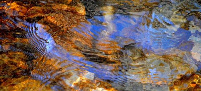 A Confluence of Elder Wisdom - ChangingAging
