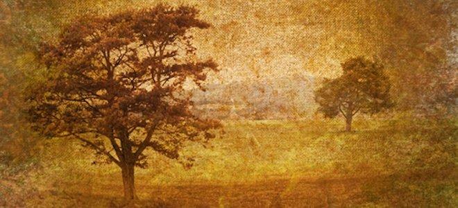 tree_scape