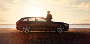 ten signs you are sweet on cars