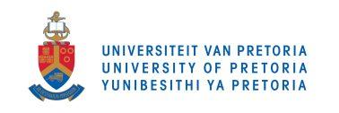 Chaya Herman (University of Pretoria) : Changing the Story