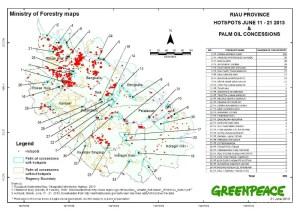 RIAU_HOTSPOT_11_21_JUNE_2013_Plantation_Concession_2009_MoF