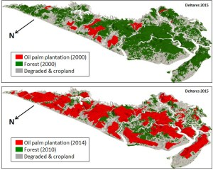 oil-palm-plantations-versus-forest-and-degraded-and-cropland