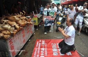 China dog market man bowing 2