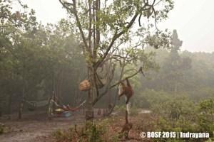 Smoke and haze blanketing the BOS Nyaru Menteng Forest School.