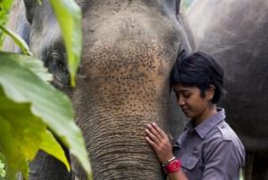 farwiza-and-elephant
