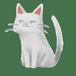 un chat regade sur le côté avec un drôle d'air
