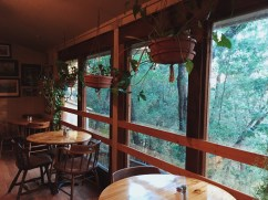 Yosemite Bug Rustic Mountain Hostel