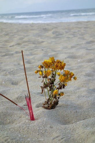 Beach Tet offerngs.