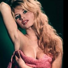 Bikinis: 37 Hot Facts