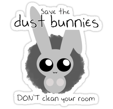 Dust Bunnies and Skateboards