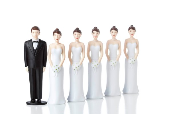 Polygamy and More