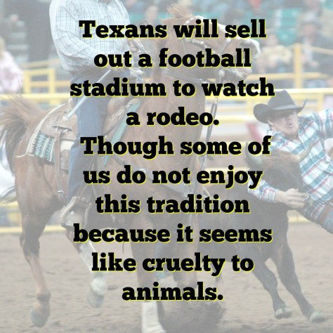 Things you may not know about Texans