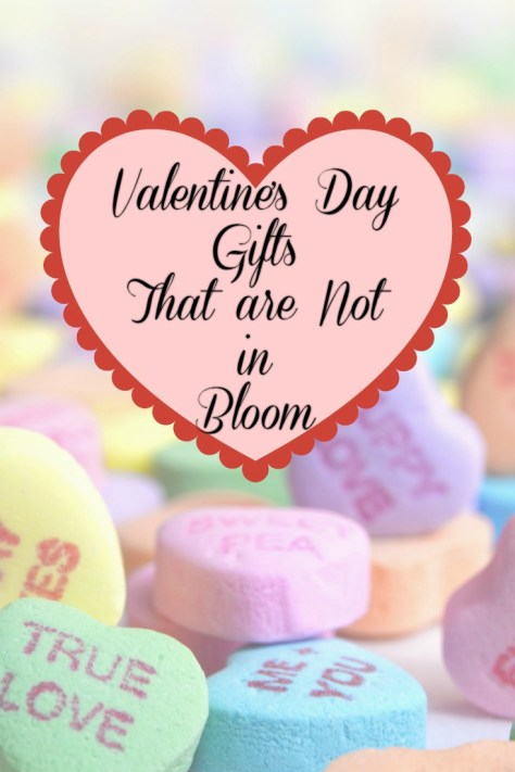 Valentine's Day Gifts That are Not in Bloom