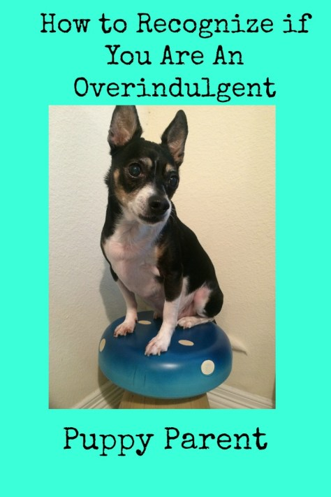 How to Recognize if you an overindulgent puppy parent