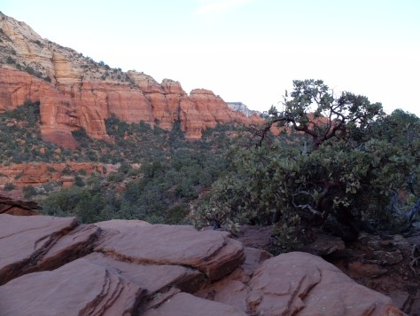 I will Always Love Sedona