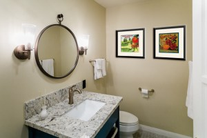 Earthy Bathroom, Bathroom Remodel, remodel, dmv interior designer, bowie maryland, washington dc, art