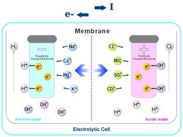 Why Alkaline Ionized Water