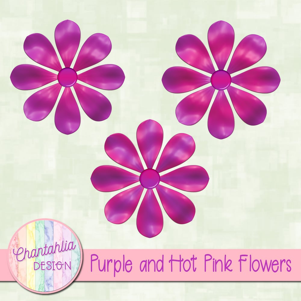 Purple And Hot Pink Flowers Chantahlia Design