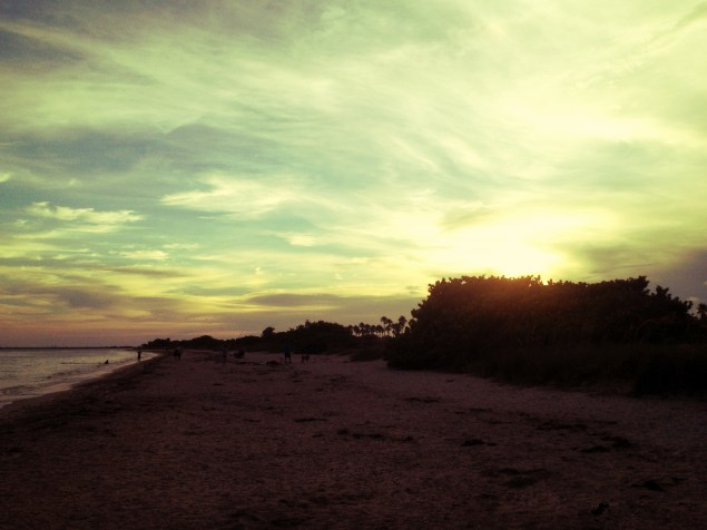 Photography, sunsets, tampa bay, ocean
