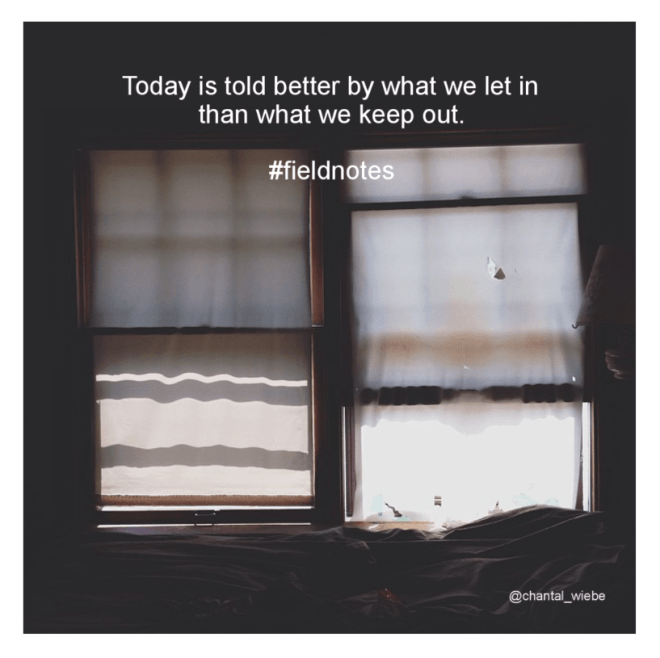 Today is told better by what we let in than what we keep out. #fieldnotes chantal wiebe shop