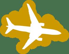 plane-gold-hi