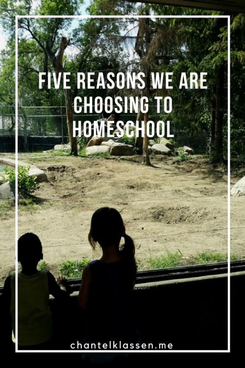Five Reasons We Are Choosing to Homeschool