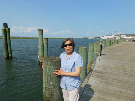 Chincoteague Island 青口提个岛