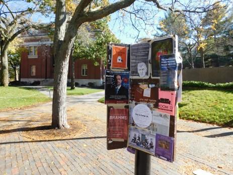 言论自由的哈佛