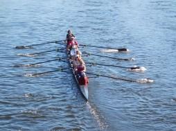 查爾斯河哈佛皮划艇隊