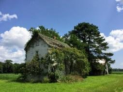 废弃的农场家庭房屋,Stockton, MD