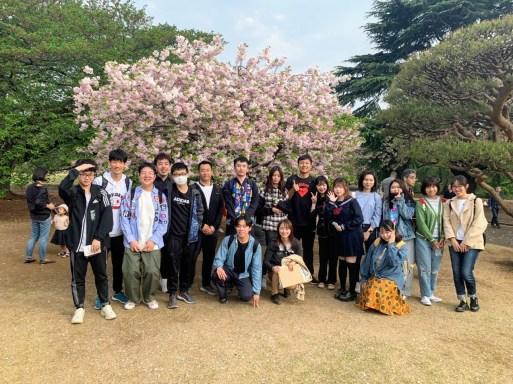 上野樱花同学合影