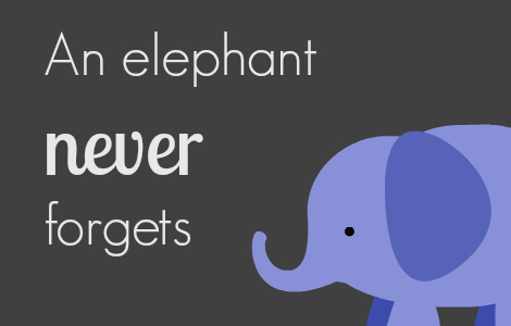 Image result for memory elephant