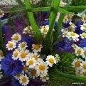 Krümels Taufe 7 Blumenschmuck