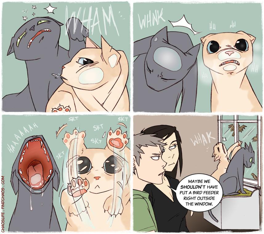 Frustrated Felines
