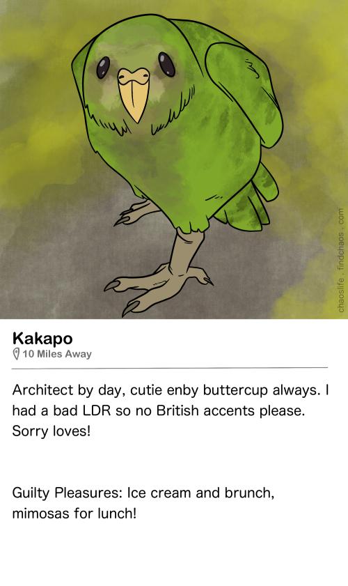 Birdr Bios: Kakapo