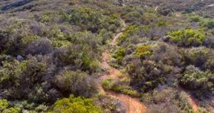 curved-hiking-trail-taken-from-atop-a-water-tower