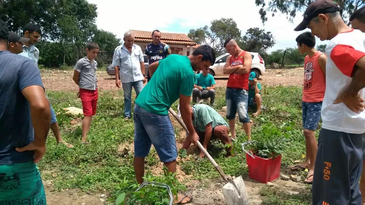 Agricultura familiar é uma das maiores atividades econômica da zona rural