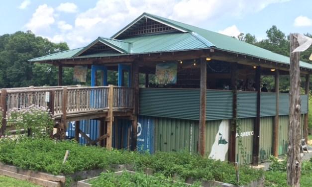 Honeysuckle Tea House: Chapel Hill's Natural Escape