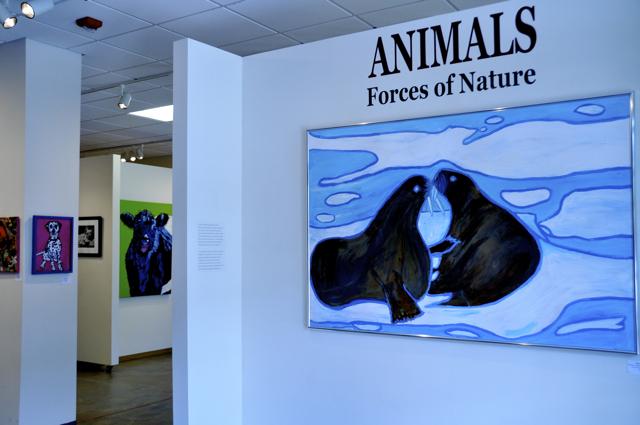 Animals_Frank1