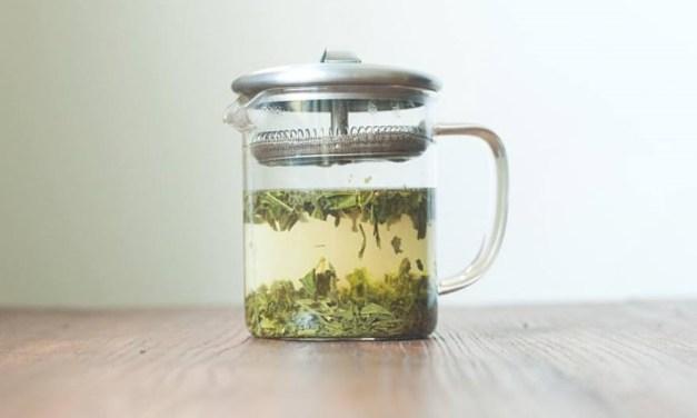 Made in NC: Sangha Tea