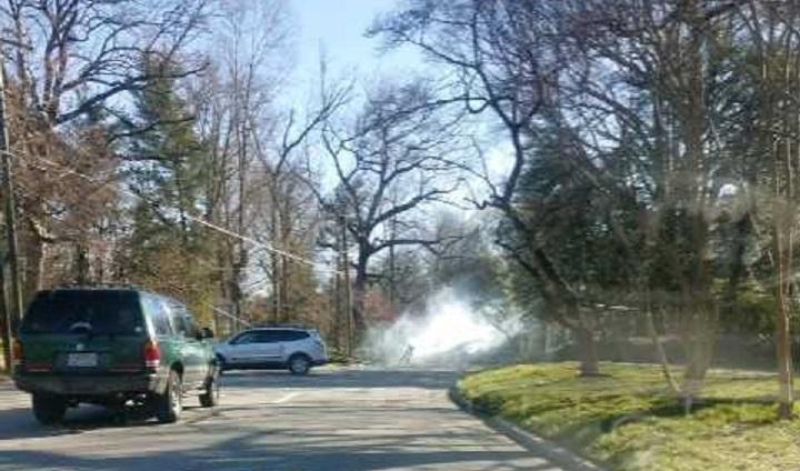 Tree Down Across Franklin Street