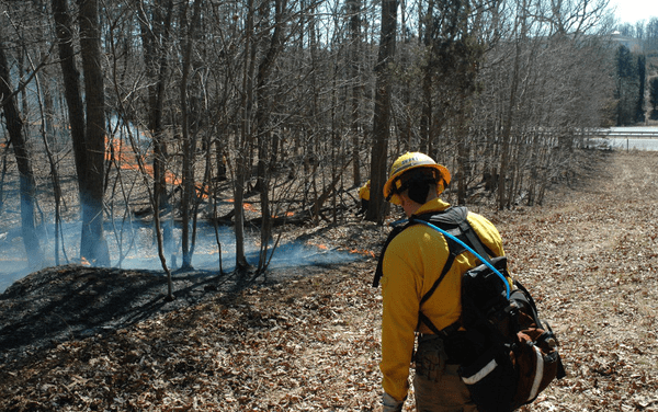 Controlled Burn Set for Occoneechee on Tuesday
