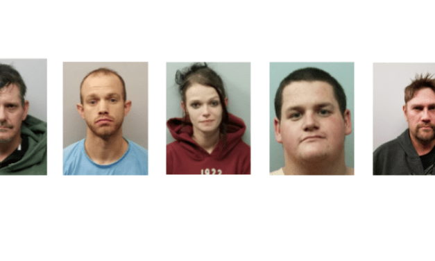 5 Arrested on Drug and Gun Charges in Chatham County